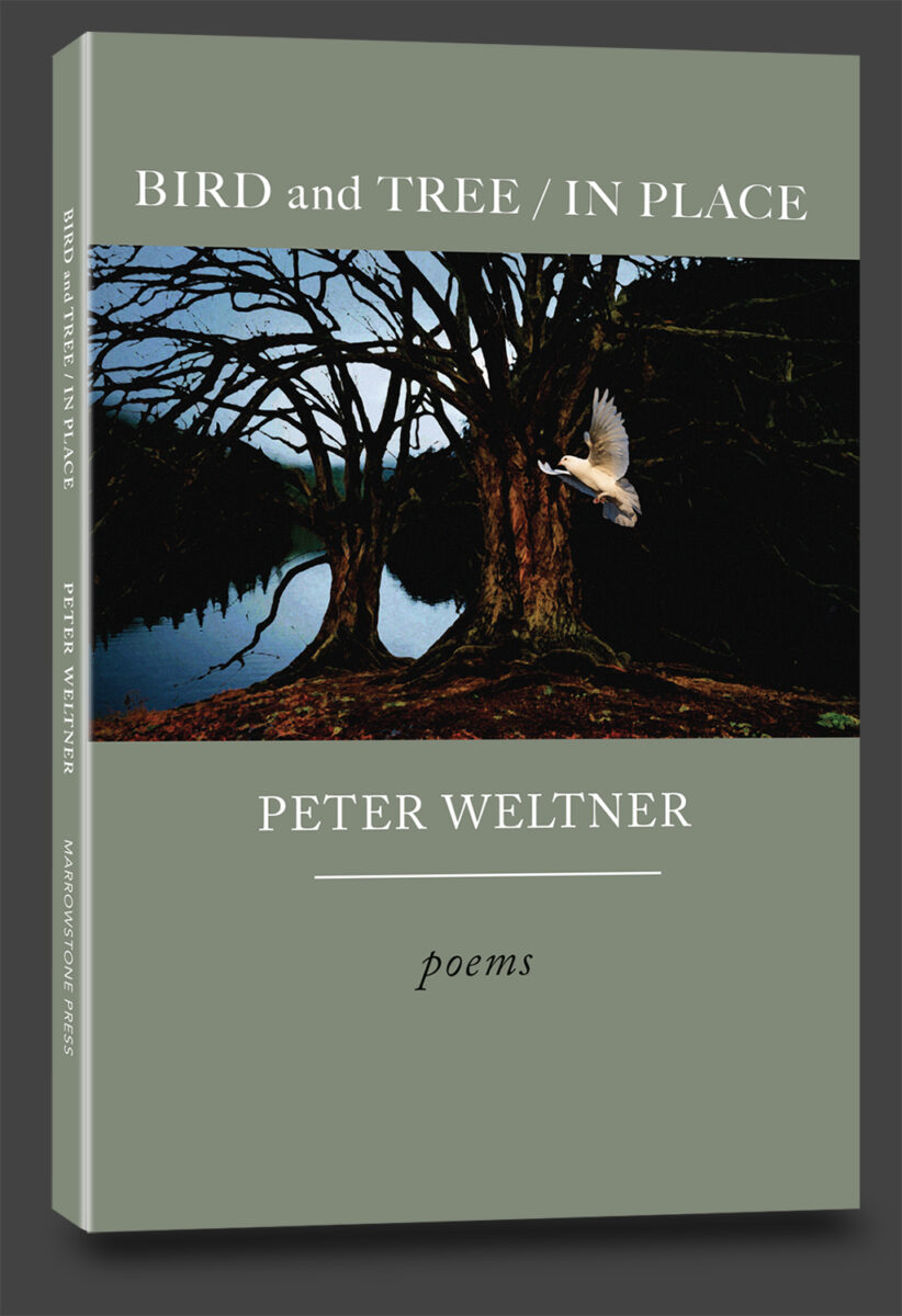 peter weltbner, poetry